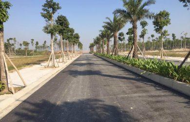 Tiến độ xây dựng dự án Hoà Phát Forestar